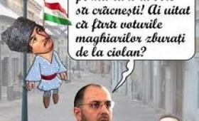 Cui ii e frica de maghiari?