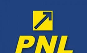 PNL la răscruce