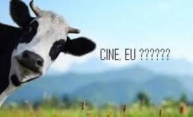 Vaca, Dragnea şi găleata cu lapte