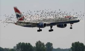 Un avion, doua avioane